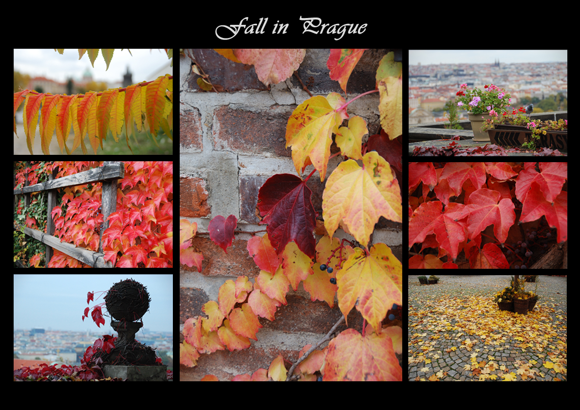 fall_in_prague